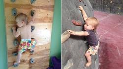"""Niewiarygodne! 2 - letnia dziewczynka wspina się po ściance! """"Mała małpka"""" - miniaturka"""