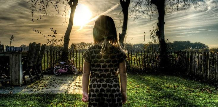 Ochrona dzieci. Co z adopcją i surogacją? Opinie Ordo Iuris - zdjęcie