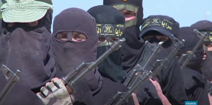 Niemiecka prasa: Rząd Niemiec sprowadza do kraju niemieckich członków tzw. Państwa Islamskiego - zdjęcie