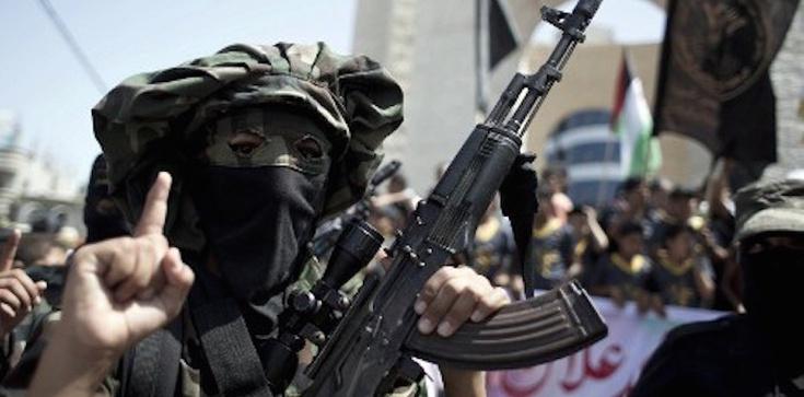 Holandia pozbawi dżihadystów obywatelstwa - zdjęcie