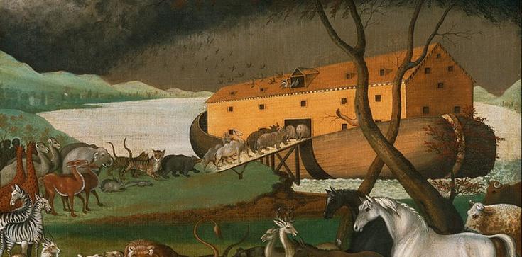 Biskup Liège w Belgii: Powódź jak za Noego, szukajmy odniesienia w Biblii - zdjęcie