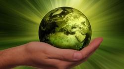Pseudoekologiczne kłamstwa globalnych korporacji, czyli sposób na oszukiwanie konsumentów - miniaturka