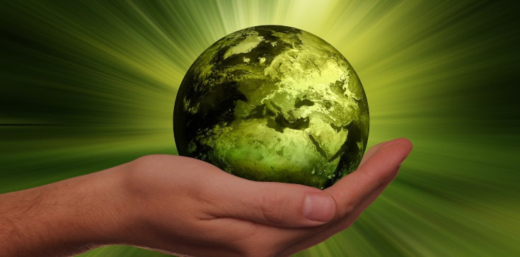Pseudoekologiczne kłamstwa globalnych korporacji, czyli sposób na oszukiwanie konsumentów - zdjęcie