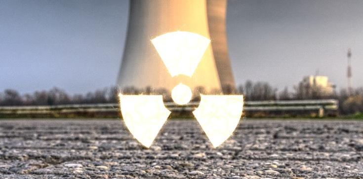 ,,Jesteśmy przerażeni''. Niepokojący komunikat na stronie białoruskiej elektrowni atomowej. Po chwili zniknął... - zdjęcie
