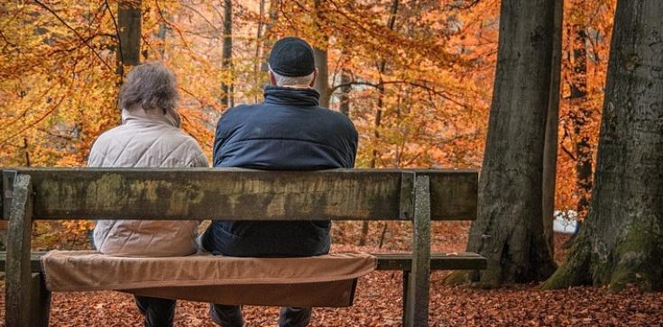Od marca '500 Plus' dla emerytów - zdjęcie