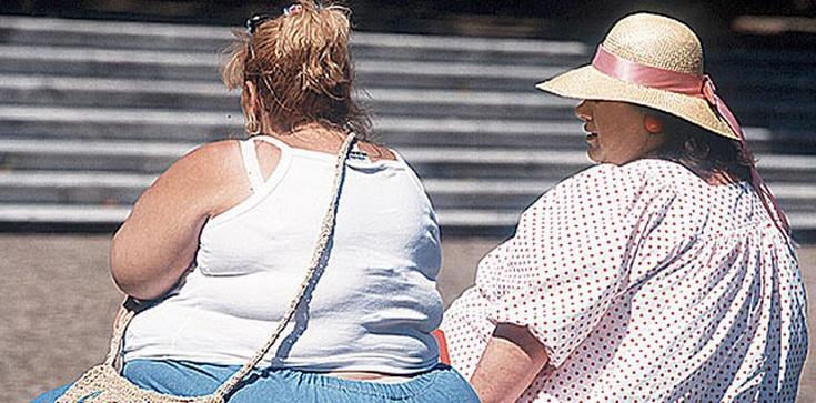 Czy Europie grozi epidemia .... otyłości? - zdjęcie