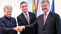 'Bezpieczna Ukraina to kamień węgielny całego regionu' - miniaturka