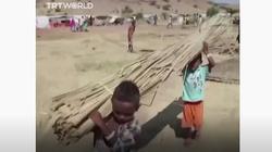 Dramat erytrejskich uchodźców w Etiopii - miniaturka