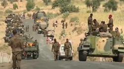 Etiopia. Armia zabija cywilów, bombarduje kościoły, domy i szkoły - miniaturka