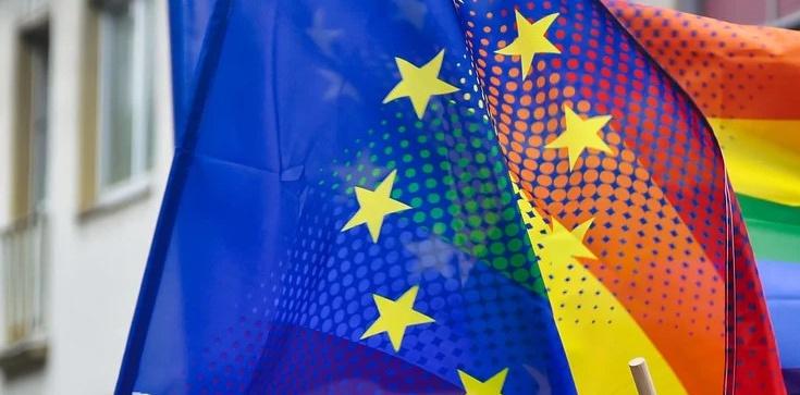 ,,Debata w UE opierała się na fundamentalnym kłamstwie!'' - zdjęcie