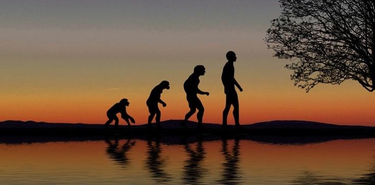Czy Pan Bóg mógł posłużyć się ewolucją? - zdjęcie