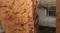 Makabryczne odkrycie pod Warszawą. Szubienice i krew na ścianach  - miniaturka