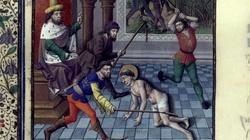 Święty Feliks z Noli, prezbiter. Syn rzymskiego legionisty - miniaturka