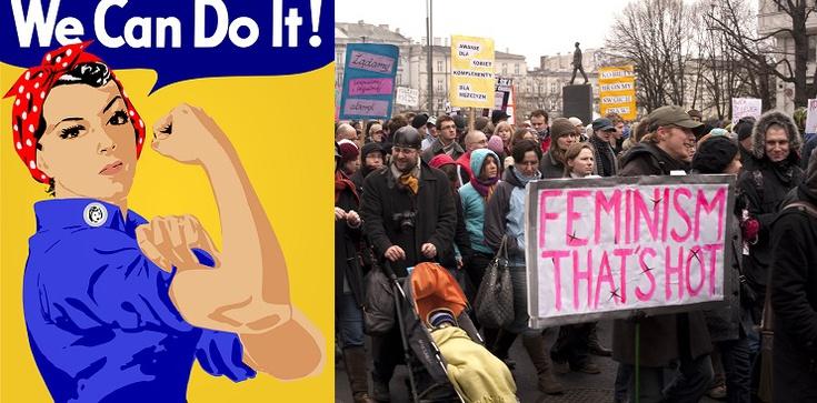 Agresja feministek wobec profesora broniącego życia - zdjęcie