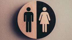 Rumunia zakazała szerzenia ideologii gender w szkołach - miniaturka