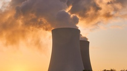 Przedstawiciel rządu Francji: polski przemysł mógłby obsługiwać i polski i francuski projekt jądrowy - miniaturka