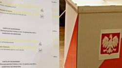 Głosowali... na logo, nie na kandydata. Nieważne głosy wyborców PO-KO - miniaturka
