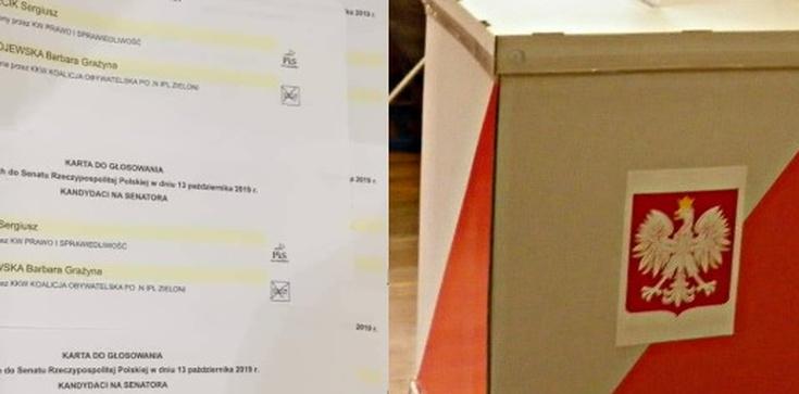 Głosowali... na logo, nie na kandydata. Nieważne głosy wyborców PO-KO - zdjęcie