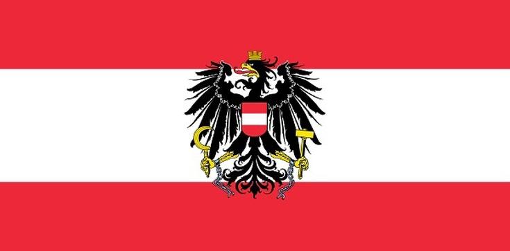Austria: Odrzucamy pomysł europejskiej armii - zdjęcie