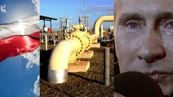 Niezależność od dostaw gazu z Rosji coraz bliżej! - miniaturka