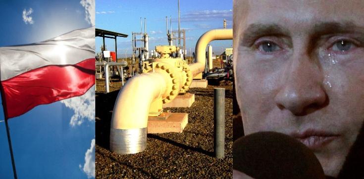 Coraz mniej ,,karmimy'' Rosję zakupami gazu i ropy - zdjęcie