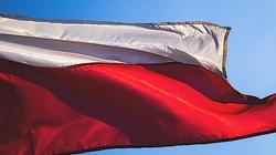 Brawo Polska! Moody's utrzymuje długoterminowy rating na poziomie A2 - miniaturka