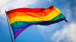 SZOK! Brytyscy geje zamawiają 3 córeczki, bo w domu mają za dużo testosteronu - miniaturka