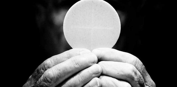Pan Bóg wskazuje na Eucharystię! Cuda ostatnich 20 lat  - zdjęcie