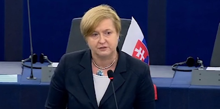 Fotyga: Polska nie stanęła pod pręgierzem UE - zdjęcie
