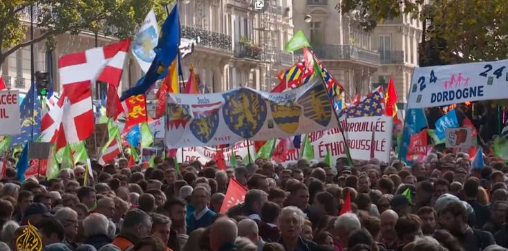 Francja: będą kolejne protesty przeciw in vitro bez ojca - zdjęcie