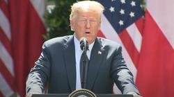 USA: Trump reaguje na przemoc w Chicago - miniaturka
