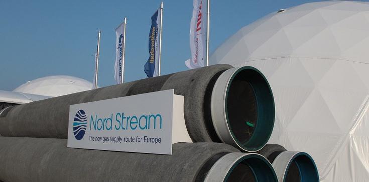 Kopacz zablokuje Nord Stream II? Wolne żarty! - zdjęcie
