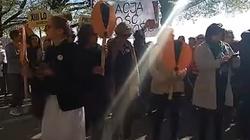 Gorąca sytuacja w Szczecinie. Nauczyciele chcą pieniędzy za strajk - miniaturka