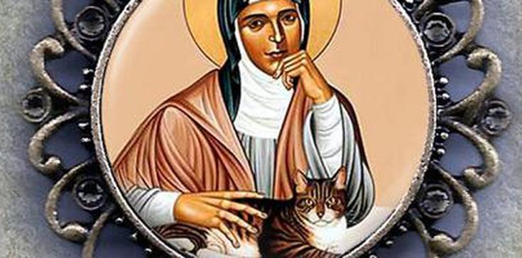 Św. Gertruda, patronka... kotów - zdjęcie