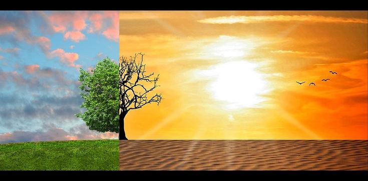 Czy mamy globalne ocieplenie? Nowe badania - zdjęcie