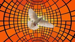 Stany Zjednoczone: Nowenna do Duch Świętego przed wyborami prezydenckimi - miniaturka