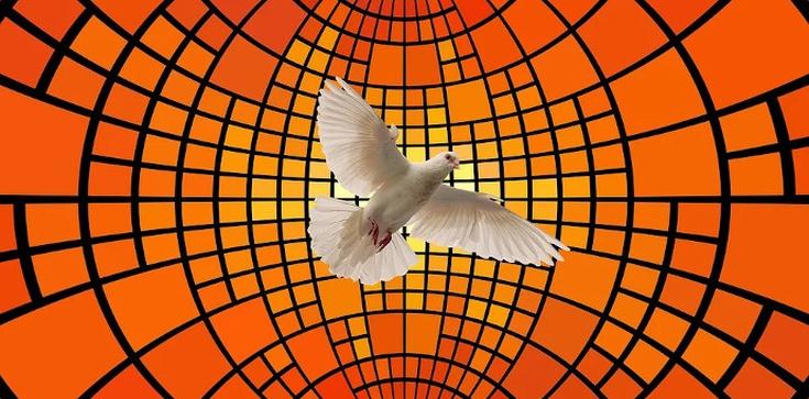 Czy Duch Święty jest gołębicą? - zdjęcie