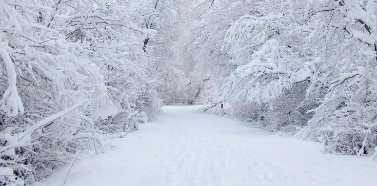 Będzie zimno. Nadchodzi globalne oziębienie - zdjęcie