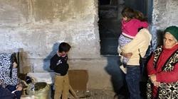 Karekin II: Obrońcy Karabachu to współcześni męczennicy [wideo] - miniaturka