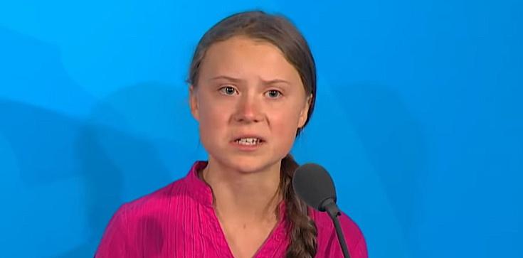 Ekohipokryzja? Greta broni klimatu, a w tle... skórzany fotel - zdjęcie