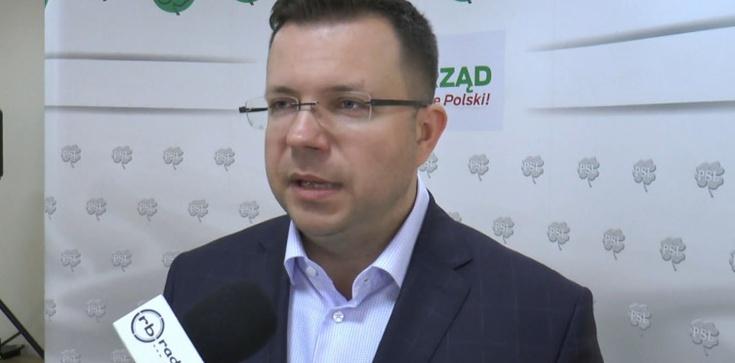 Polityk PSL: Ludowcy już w I turze głosowali na Andrzeja Dudę - zdjęcie
