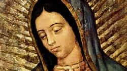 Matka Boża z Guadalupe- obraz nie ręką ludzką uczyniony! - miniaturka