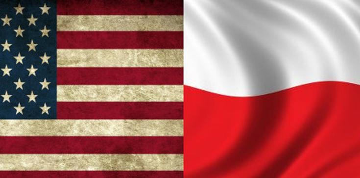 Ustawa medialna. Nieoficjalnie: Do Polski przyleci ważny dyplomata USA - zdjęcie