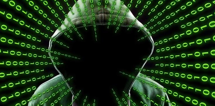 Rosyjski cyberatak w Niemczech. Zaatakowano infrastrukturę krytyczną i banki - zdjęcie
