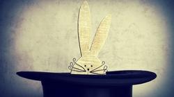 Co Budka wyjmie z kapelusza po Kidawie? - miniaturka