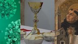 O słomie i wielkości. Pandemiczny spór o Eucharystię. Co powiedziałby św. Tomasz? - miniaturka