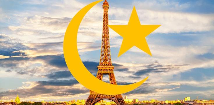 Apel francuskich generałów. Prokuratura odmawia wszczęcia postępowania - zdjęcie