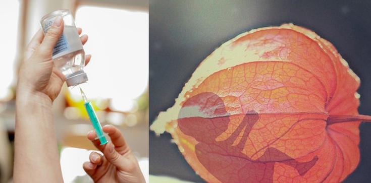 Egzorcysta: Szczepionki wykorzystujące komórki abortowanych dzieci to kradzież ich ciał! - zdjęcie