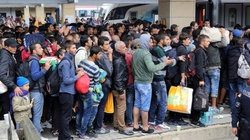W Niemczech brakuje rąk do pracy. ,,Potrzebujemy 400 tys. imigrantów rocznie'' - miniaturka