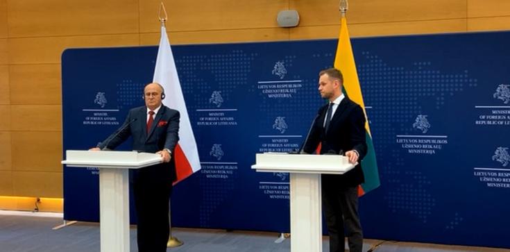 Prof. Rau na Litwie: W obliczu zagrożenia musimy działać razem! - zdjęcie